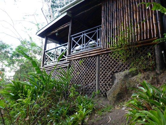 Fond Doux Plantation & Resort: Room