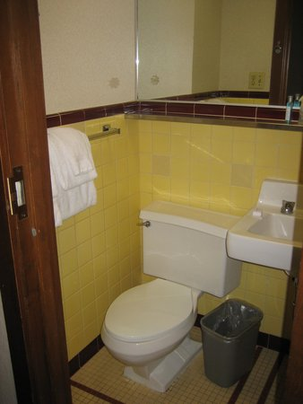 Kahler Grand Hotel : Bathroom - small but adequate