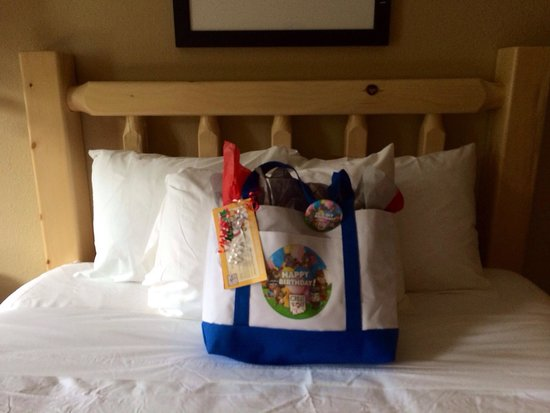 Great Wolf Lodge New England: Gift bag with room birthday package: included an album, disposable camera, 4 goody bags with a c