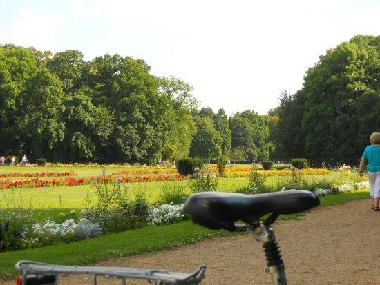 Ile Marguerite : Floral garden