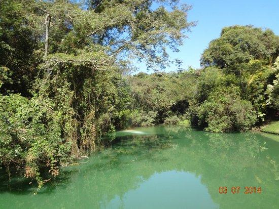 Inhotim : vista de um dos lagos