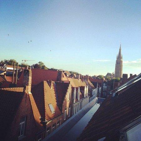Botaniek  Hotel: Вид из окна