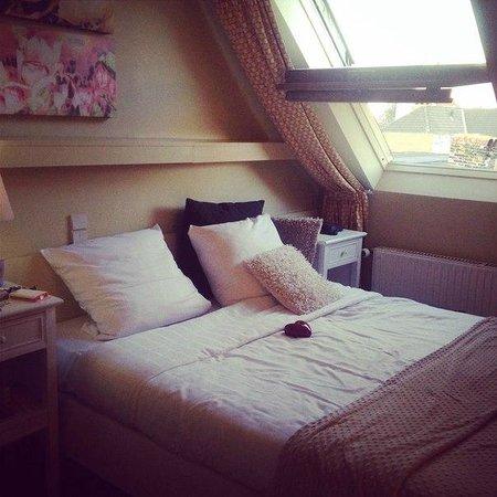 Botaniek  Hotel : Комната