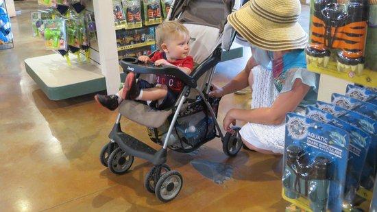 Utah's Hogle Zoo: In the gift shop