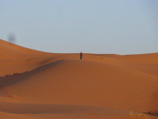 Desert Luxury Camp : Desert camp