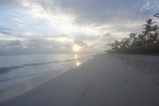 Royalton Punta Cana Resort & Casino: Beautiful beaches