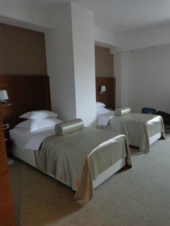 Hotel Aurel : Twin room