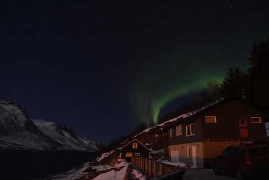 Ersfjordbotn Kystferie: Northern Lights on our first night!