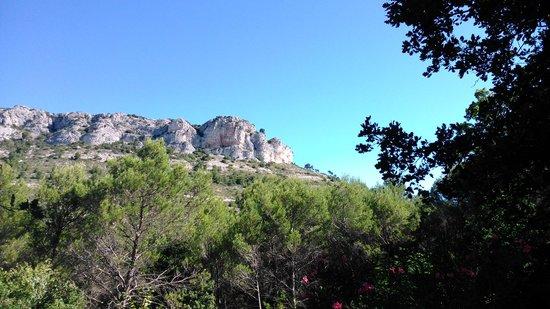 Bastide de la Roquemaliere : Vistas del Petit Luberon
