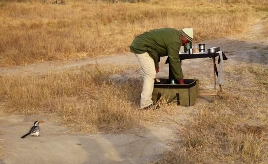 Arathusa Safari Lodge: morning stop for coffee in the brush.