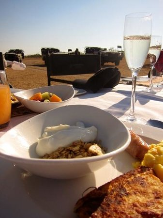 Arathusa Safari Lodge : The bush breakfast - complete with champagne.