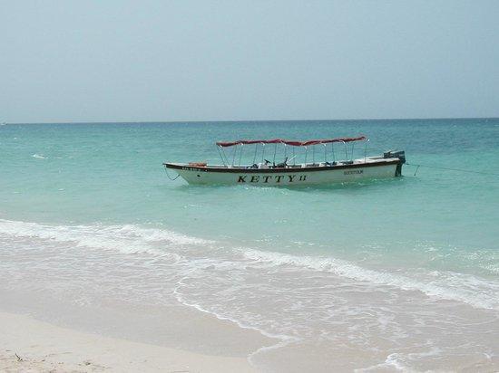 Decameron Isla Palma : 12