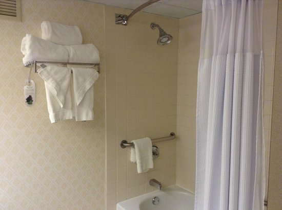 Crowne Plaza Hotel Englewood: Shower Curtain