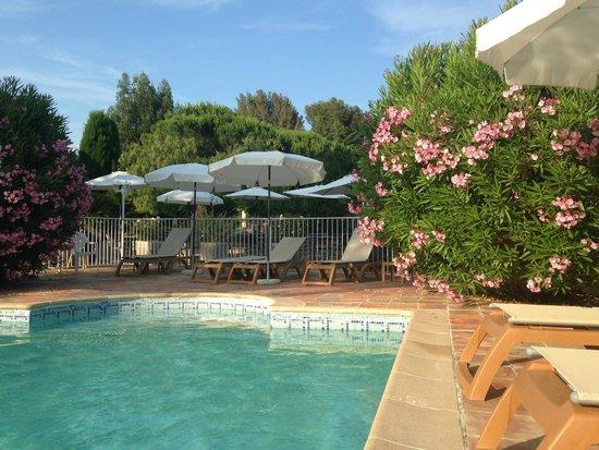 Domaine du Calidianus : Pool