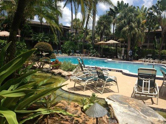 BEST WESTERN Naples Inn & Suites: Piscina nel giardino