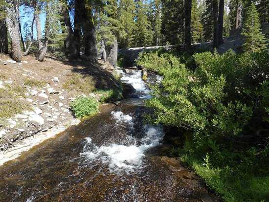 Lassen Volcanic National Park Hiking Trails : Kings Creek