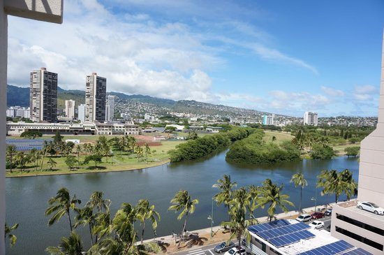 Coconut Waikiki Hotel: The beautiful view from room 1008!