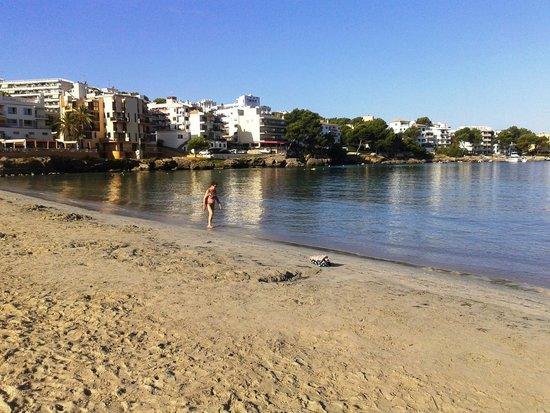 Palmira Isabela: spiaggia palmira