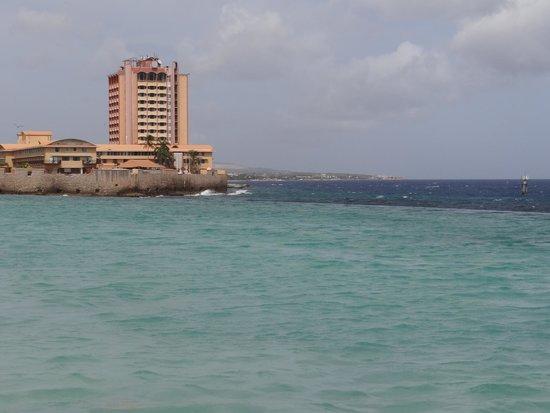 Renaissance Curacao Resort & Casino : Infinite pool