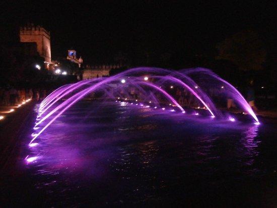 Alcazar de los Reyes Cristianos: by night