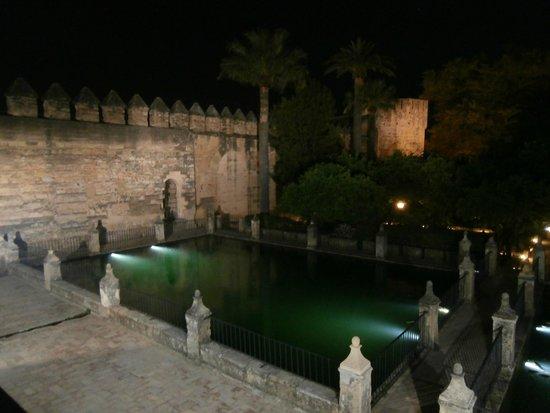 Alcázar de los Reyes Cristianos: by night