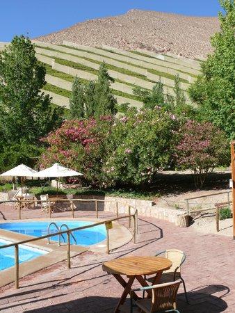 El Galpón Pisco Elqui: Blick vom Pool in die umliegenden Berge