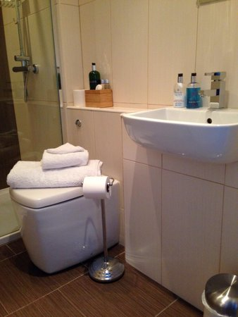 The Green House B & B: View of shower room (rm 2)