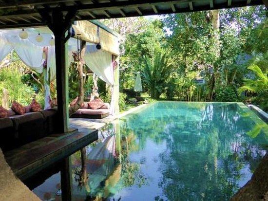 Kura Kura Yoga Retreat: the pool