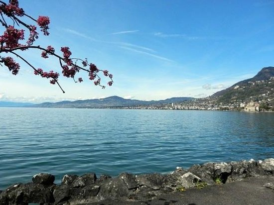 Siol Garni : Lac Léman