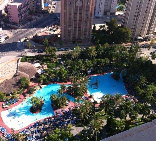 Melia Benidorm: Pool area Lots of sunbeds always available