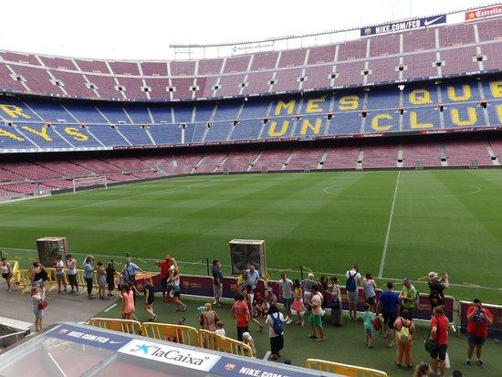 Camp Nou: the pitch
