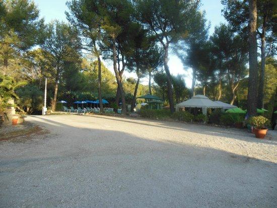 Hotel Bureau La Cigaliere: Site