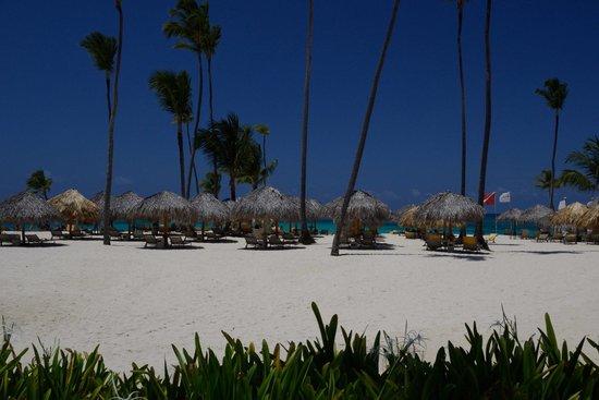 Iberostar Grand Hotel Bavaro: Пляж