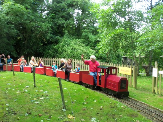 Devon Railway Centre: Our miniature railway