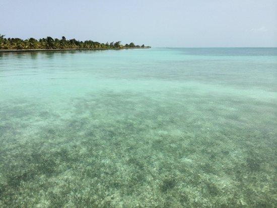 El secreto océano