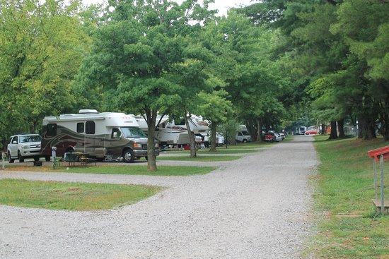 Bowling Green KOA : Camp view
