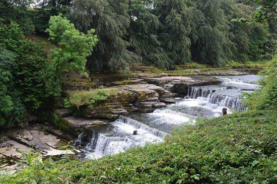 Aysgarth Falls: Lower Falls