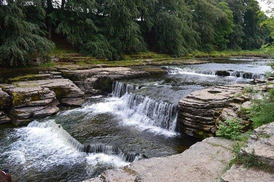 Aysgarth Falls: Lower Falls-close up