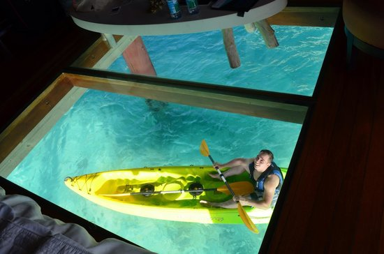 Le Meridien Bora Bora : Glass in front if bed