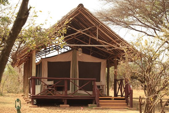 Voyager Ziwani, Tsavo West: One of the tents