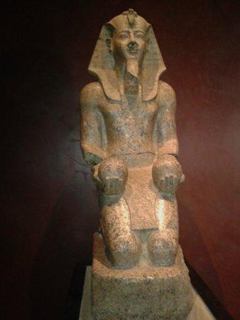 Musée égyptologique de Turin : Museo Egizio