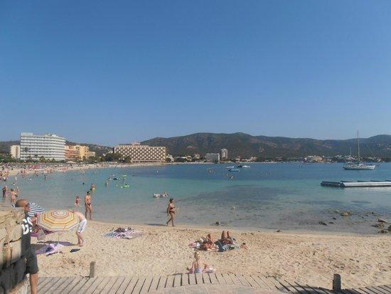 AluaSun Torrenova: Beach