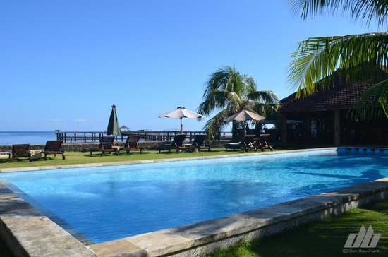 Cocotinos Manado : Pool