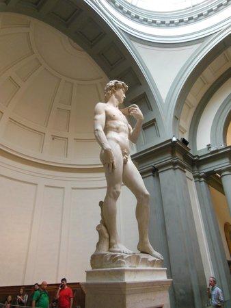 Accademia di Belle Arti (Galleria dell'Accademia): Spectacular