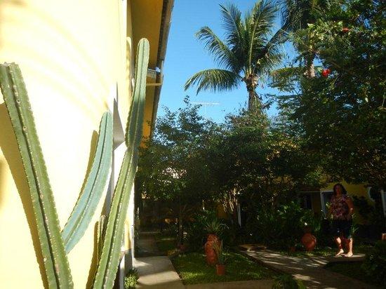 Pousada AguaMarinha: Vegetação