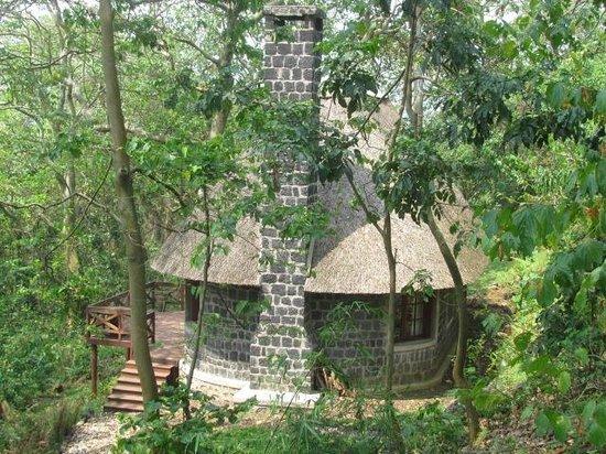 Mikeno Lodge: rooms