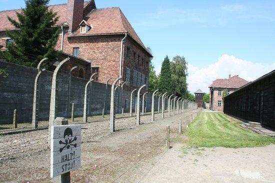 SeeKrakow Day Tours: Auschwitz Barracks