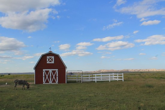 Circle View Guest Ranch: Vistas