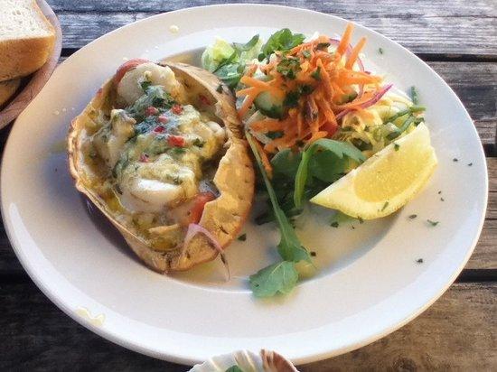 Scallops with salad - Bild von Rachel's, West Bay - TripAdvisor