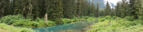 Fish Creek Wildlife Observation Site: fish creek wildlife observation creek